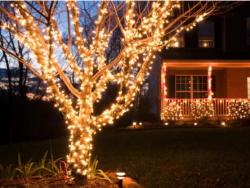 IP65 Dış Mekan Su Geçirmez İp led Işık - 10 Metre - İp Led Işık Bahçe Ağaç Aydınlatma - Thumbnail
